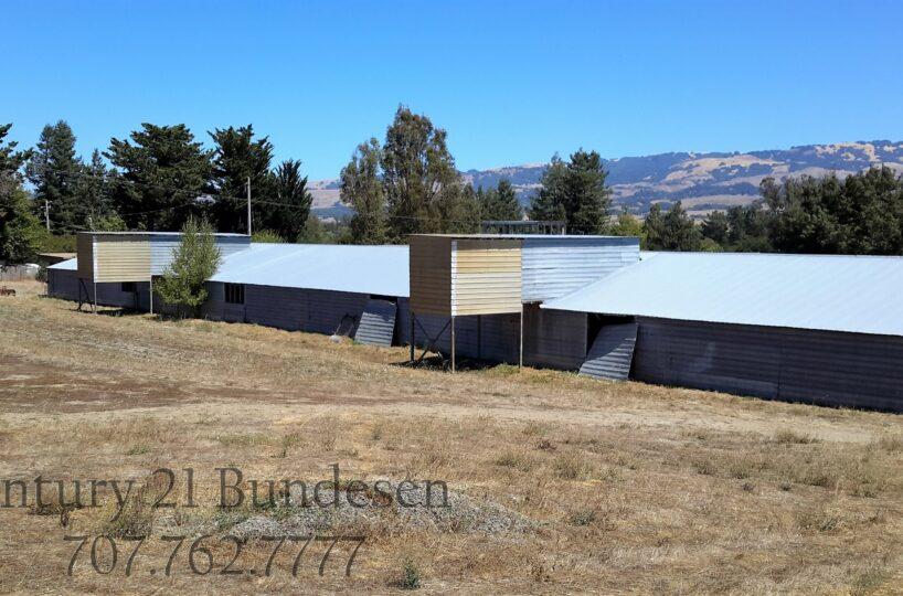920 Goodwin Barn